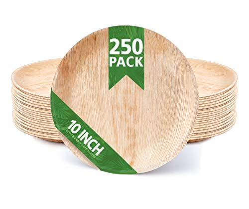 250 Pack of 10' Round Disposable Palm Leaf Plates Set - Sturdy & Elegant & Eco - Perfect for BBQs - Camping - Party - Home Use - Biodegradable & Compostable Dinnerware - by Eko Future