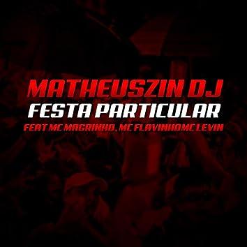 Festa Particular (feat. Mc Magrinho, MC Flavinho & MC Levin)
