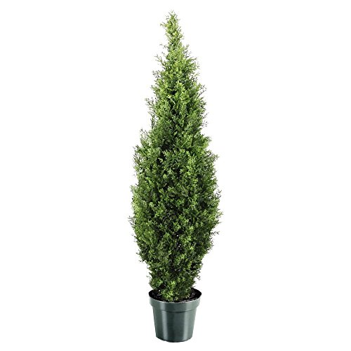 National Tree 48 Inch Arborvitae Tree in Dark Green Round Plastic Pot (LMC4-700-48-6)