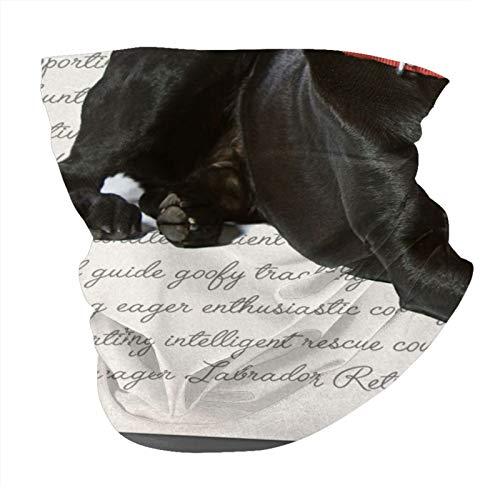 Xinflag@10 Negro Panel Variedad Cabeza Bufanda Cuello Calentador Bandanas Al Aire Libre Headwear Bufanda Cuello Polaina Bandanas Para Hombres Y Mujeres Bandana