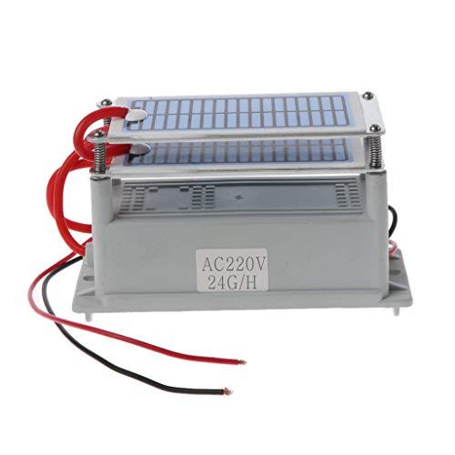 NOWON Ozonizador de Placa de cerámica Integrado generador de ozono de 220...