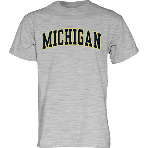 Blue84 NCAA Michigan Wolverines Mens Arching Team Name Short Sleeve T Shirt, Michigan Wolverines Dark Heather, Medium