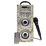 Biwond JoyBox Karaoke Altavoz 10W + Micrófono (Bluetooth TWS, Mando IR AUX, Radio FM, Tarjeta SD, USB, Pantalla LED) – Guitar