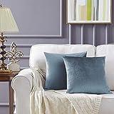 Gigizaza Gris Azul Terciopelo Almohada Cubre Caso Suave decoración Fundas de de cojín para sofá Dormitorio Coche Cama Casa Decor 45x45cm ,Pack de 2
