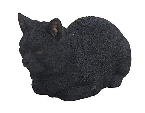 Vivid Arts XRL-DC31-B Dreaming Cat, Black, Size B