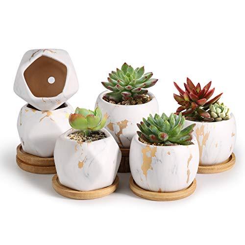 T4U 8cm Gemusterte Keramik Sukkulenten Töpfe mit Untersetzer 6er-Set, Klein Mini Blumentopf Übertopf für Kakteen Moos Zimmerpflanzen, Marmor Sammlung