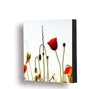 """Bild""""Mohnblume Sonnenuntergang"""" 10x10cm oder 14x14cm, MDF, Geschenk, Deko, Natur"""
