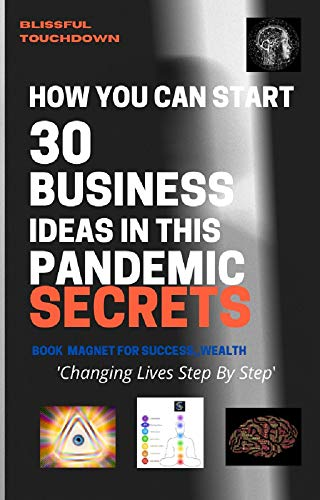 How You Can Start 30 Business Ideas in this Pandemic SECRETS (English Edition)