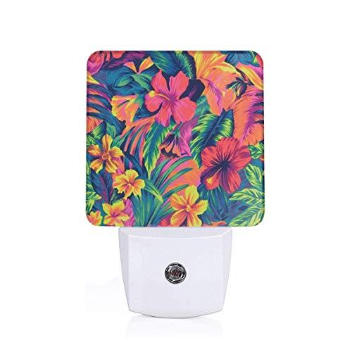 Led Night Light Elemental Flowers Auto Dusk-to-Dawn Sensor Lamp for Bedroom Bathroom Kitchen Hallway Stairs(Plug-in)
