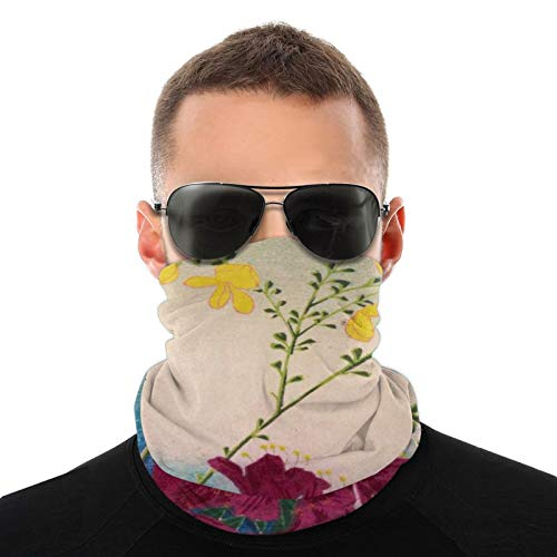Half Face Mask Bandana Headwrap Dust-Free Ear Face Mask Neck Warmer for Cold Weather, Snowboard, Riding, Men Women (Vintage Colorful Flowers Gaiter)