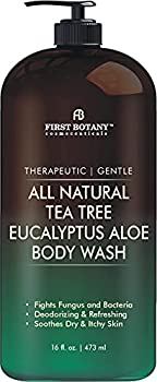 ALL Natural Tea Tree Body Wash - Fights Body Odor Athlete's Foot Jock Itch Nail Issues Dandruff Acne Eczema Yeast Infection Shower Gel for Women & Men Eucalyptus Aloe Skin Cleanser -16 fl oz