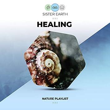! ! !  Healing Nature Playlist ! ! !