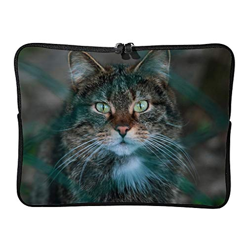 Standard Street Cat Laptop Bags Scratch-Resistant Tablet Bags Suitable for Work White 13 Zoll