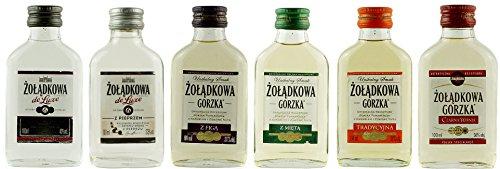 Geschenkset 6 x Żołądkowa Gorzka Minis in der Probiergröße | Polnischer Wodka | je 0,1 Liter