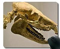 賭博のマウスパッド、巨大な恐竜の骨組ゴム製マウスパッド