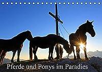 Pferde und Ponys im Paradies (Tischkalender 2022 DIN A5 quer): Pferde und Ponys im Salzburger Land (Monatskalender, 14 Seiten )