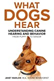 What Dogs Hear: Understanding Canine Hearing and Behavior From Puppy to Senior
