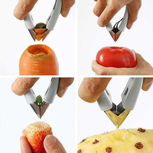IANSISI Máquina Multifuncional de Limpieza y pelado, Pinzas para Frutas con Quita Semillas, pelador de piñas de Acero Inoxidable