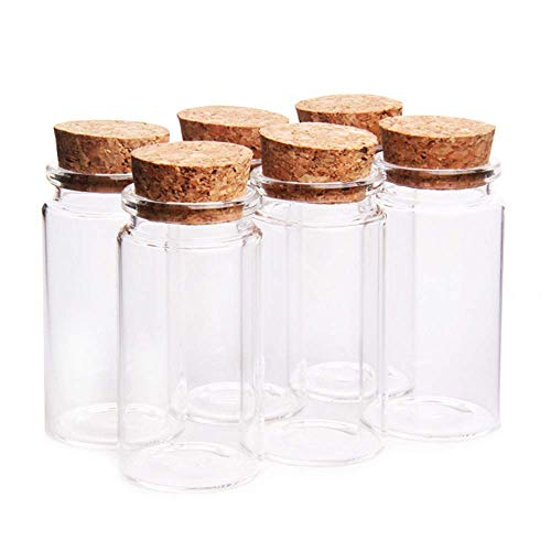 Danmu Art 6 tarros de cristal de 100 ml, 47 mm x 90 mm, con tapones de corcho, mini botellas de cristal, tarros de conservación de especias