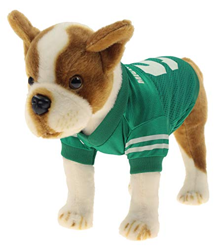 Sporty K9 NCAA Football Dog Jersey, Michigan State Spartans X-Small