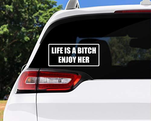 DKISEE Pegatina de coche para coche, calcomanía de coche, calcomanía de besos, pareja detrás de una linterna, amor romántico, para coche, portátil, ventana, 15,2 cm