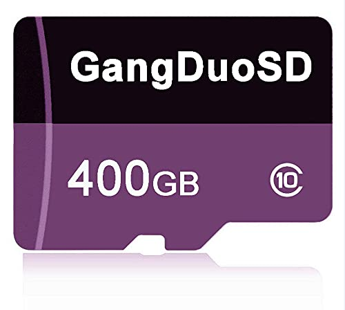 Class 10 Micro SDXC Card 400GB Memory Card with Free SD Adapter Micro SD Card TF Card Flash Card for Smartphone Nintendo Switch Tablet Drone Digtal Camera etc (400GB)