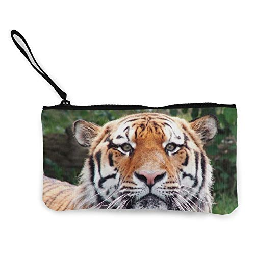 Tiger_Face_Happy_Look_Big_Cat x Women Canvas Coin Purse Unisex 3D Print Pattern Coin Wallets for Men and Women