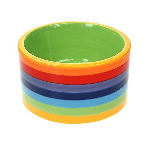 Windhorse Rainbow Striped Ceramic Dog / Cat Bowl - 16cm Diameter - 9cm High