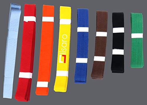 Lisaro kampfsportgürtel Karate Judo Taekwondo Ju Jutsu BJJ Gürtel Gr. 160-300 cm (gelb, 220)