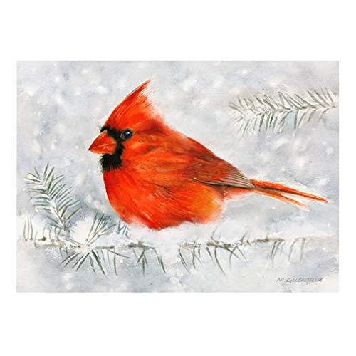 Cardinal Winter Bird Art Print Guerquin Mira Free shipping New - artist Superior
