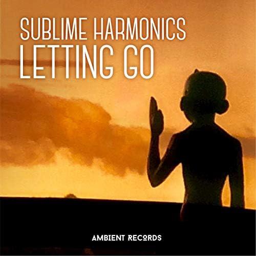 Sublime Harmonics