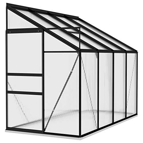vidaXL Gewächshaus UV-beständig Treibhaus Garten Tomatenhaus Pflanzenhaus Frühbeet Gartenhaus Anthrazit Aluminium 5,24m³ PC-Platte