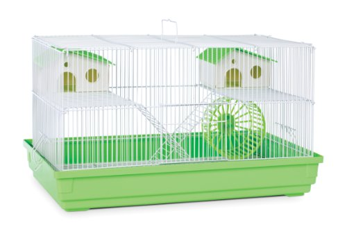 Prevue Hendryx SP2060G Deluxe Hamster and Gerbil Cage, Lime Green,11 INCHES