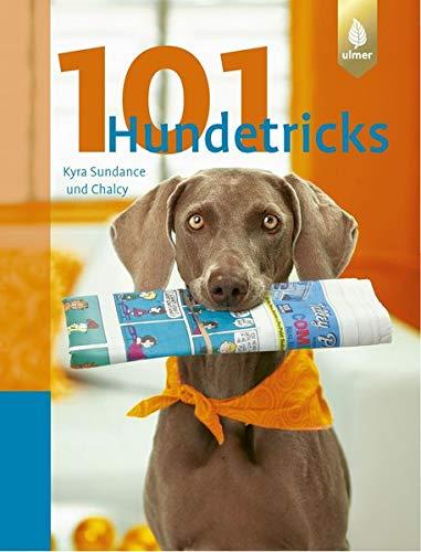 101 Hundetricks gelb 12 x 3,5 cm