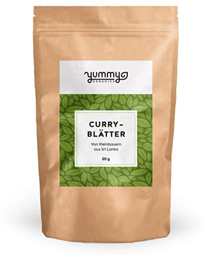 Curryblätter getrocknet, 20 g Beutel | fair gehandelt von Kleinbauern aus Sri Lanka | perfekt für Curry Fans