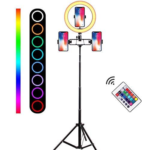 LED-ringlicht 26 cm / 10,2 inch dimbare helderheid tweekleurig met standaard en zachte buis, draagtas voor camera, YouTube, vlog, make-up, portretfotografie