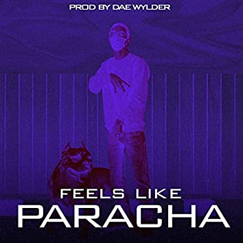feel like paracha