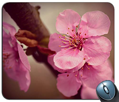 Gaming Mouse Pad Japanese Pink Cherry Blossoms Design with Personalized Design Non-Slip Rubber Mousepad