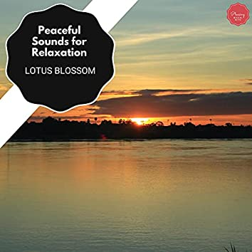 Peaceful Sounds For Relaxation - Lotus Blossom