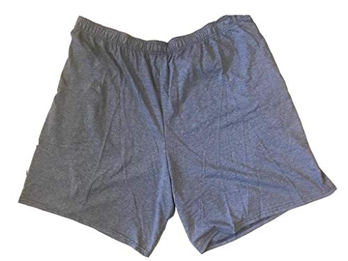 Fruit of the Loom Men's Cotton Blend Micro-Mesh Knit Athletic Shorts with Pockets Gym Shorts for Men (Heather Blue, 2XLarge)