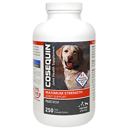 Nutramax Cosequin Plus MSM,Chewable Tablets, 250 ct (CHEWDS250-MSM)