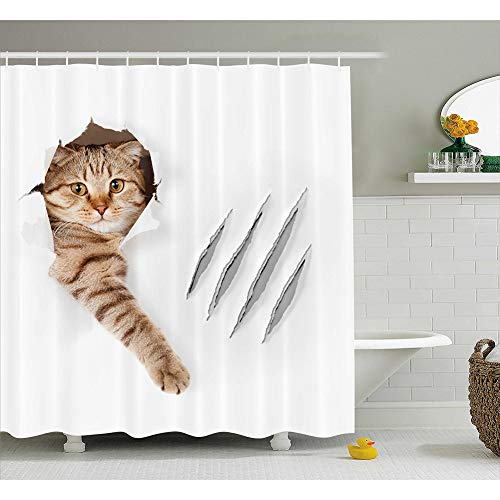 cortinas de baño graciosas