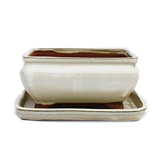 Bonsai-Schale mit Unterteller Gr. 2 - hellbeige - eckig - Modell G81 - L 14,5cm - B 11,5cm - H 6,5cm
