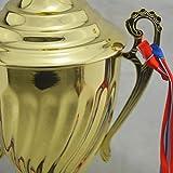 Zoom IMG-1 stobok trofeo d oro coppa