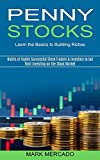 Penny Stocks: Habits of Highly Successful Stock Traders & Investors to Get Rich Investing on the Stock Market (Learn the Basics to Building Riches)