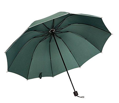 Redleaf Premium xxl120cm diametro grande ombrello per 2persone compatto antivento tempesta Fest in robusto tessuto 4colori Blu Nero Rosso lilla, verde (verde) - RedleafBig-green