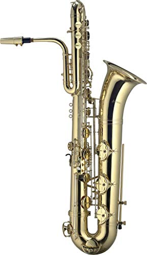 STAGG BASS SAXOPHONE,WITH LIGHT CASE