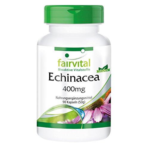 Echinacea Kapseln 400mg - HOCHDOSIERT - VEGAN - 90 Kapseln - Echinacea purpurea