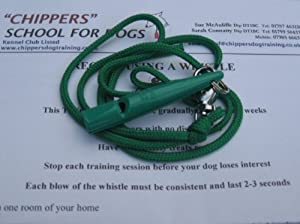 Acme 210.5 Sifflet avec cordon pour chien Instructions incluses (français non garanti)