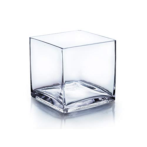 WGV Cube Glass Vase, Candle Holder, 6